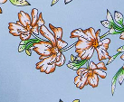 Arctic/Floral Print